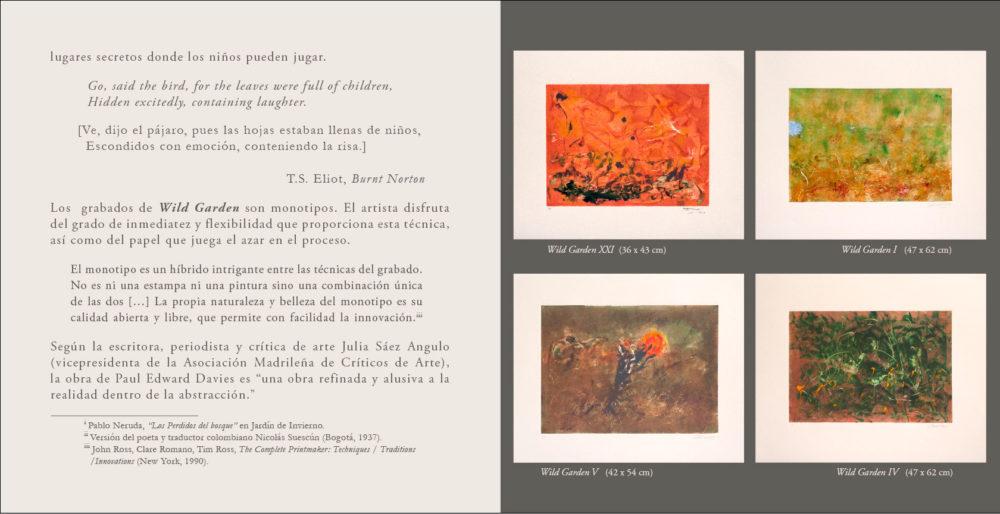 Text2-esp-Imagenes